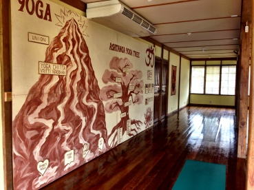 Our Yoga Wall